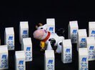 My First Signs (2007) (Videos) Sound Ideas, COW - SINGLE MOO, ANIMAL 02