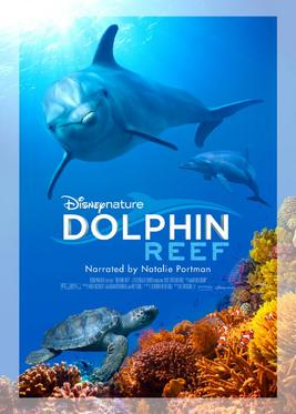 Dolphin Reef (2018)