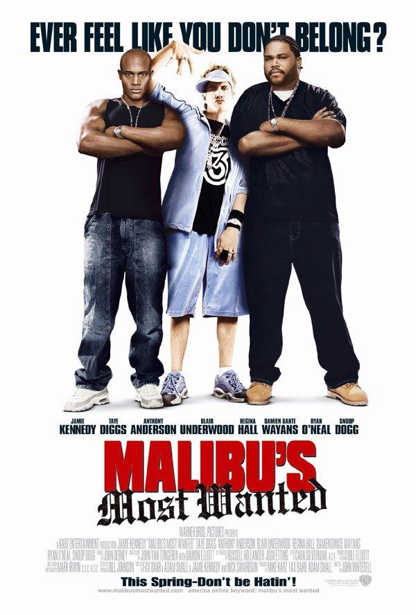 Malibu's Most Wanted (2003)