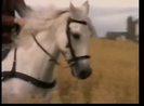 Thomas and the Magic Railroad (2000) (Trailers) Sound Ideas, HORSE - EXTERIOR WHINNY, ANIMAL 06