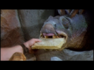 The Flintstones Trailer BITE, CARTOON - BONE BITE,
