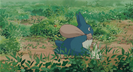 My Neighbor Totoro RICOCHET - CARTOON RICCO, 01 2
