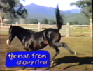 20th Century Fox Family Features (1995) Trailer Hollywoodedge, Horses 1 High Pitched TE016301