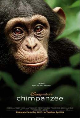 Chimpanzee (2012)