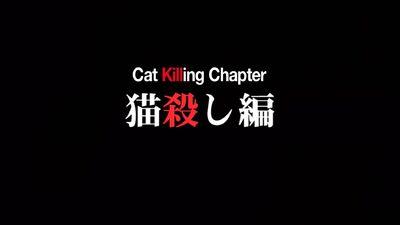 When They Cry Nekogoroshi Chapter.jpg