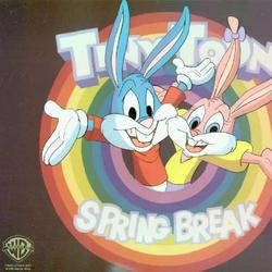 Tiny Toon Adventures: Spring Break Special (1994)