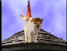 Sound Ideas, CAT - DOMESTIC SINGLE MEOW, ANIMAL 03 Barney's Adventure Bus