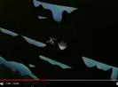 Fox Kids Bumper 1994 Sound Ideas, WHINE, CARTOON - SHELL SCREAMING WHINE DOWN,-1