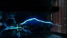 The Terminator (1984) SKYWALKER, ELECTRICITY - BIG VARIOUS SPARKINGS