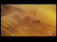 Pitch Black (2000) SKYWALKER EXPLOSION 13 (modified) 1
