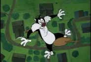 The Jet Cage LOONEY TUNES CARTOON FALL SOUND-2