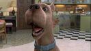 Scoobydoogross03