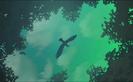 The Rugrats Movie Hollywoodedge, Bird Hawk Single Scre PE020801