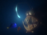 SKYWALKER, ROAR - ANGLER FISH ROAR