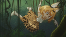 Kemono Friends Ep. 2 Hollywoodedge, Quick Warble Sizzle CRT015502 (1st warble sizzle)