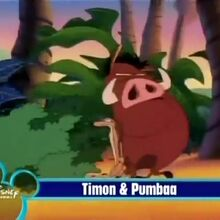 Timon and Pumbaa French Fried Sound Ideas, XYLOPHONE - XYLOPHONE LONG RUN DOWN, CARTOON, MUSIC, PERCUSSION.jpg
