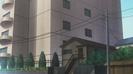 Toradora! Ep. 1 Anime Bird Chirp Sound 1 (3)