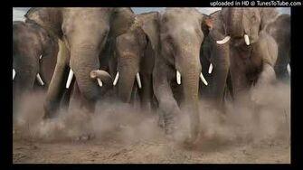 Denatoons_Elephant_Stampede_Sound_Effects-0