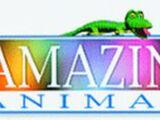 Henry's Amazing Animals