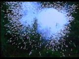 Sound Ideas, Explosion Punchy Impact 03 - Single, large, bright explosions