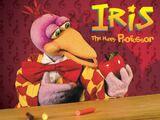 Iris, The Happy Professor
