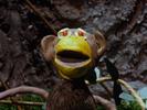 Gumby - The Mocking Monkey Valentino Wolf Howls