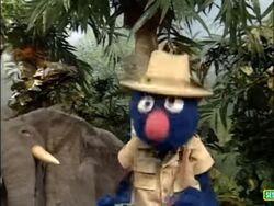 Sesame Street Grover and the Elephant Sound Ideas, BIRD, PARROT - LARGE SINGLE CALL, ANIMAL (2).jpg