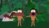 RainforestShmainforest084