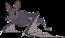 Non-human-wuhan-bat-cc.png