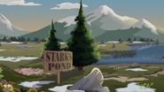 Starks-Pond