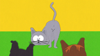 South.Park.S03E07.Cat.Orgy.1080p.BluRay.x264-SHORTBREHD.mkv 001842.807