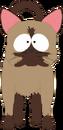 Kenny's Cat