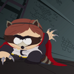 The Coon