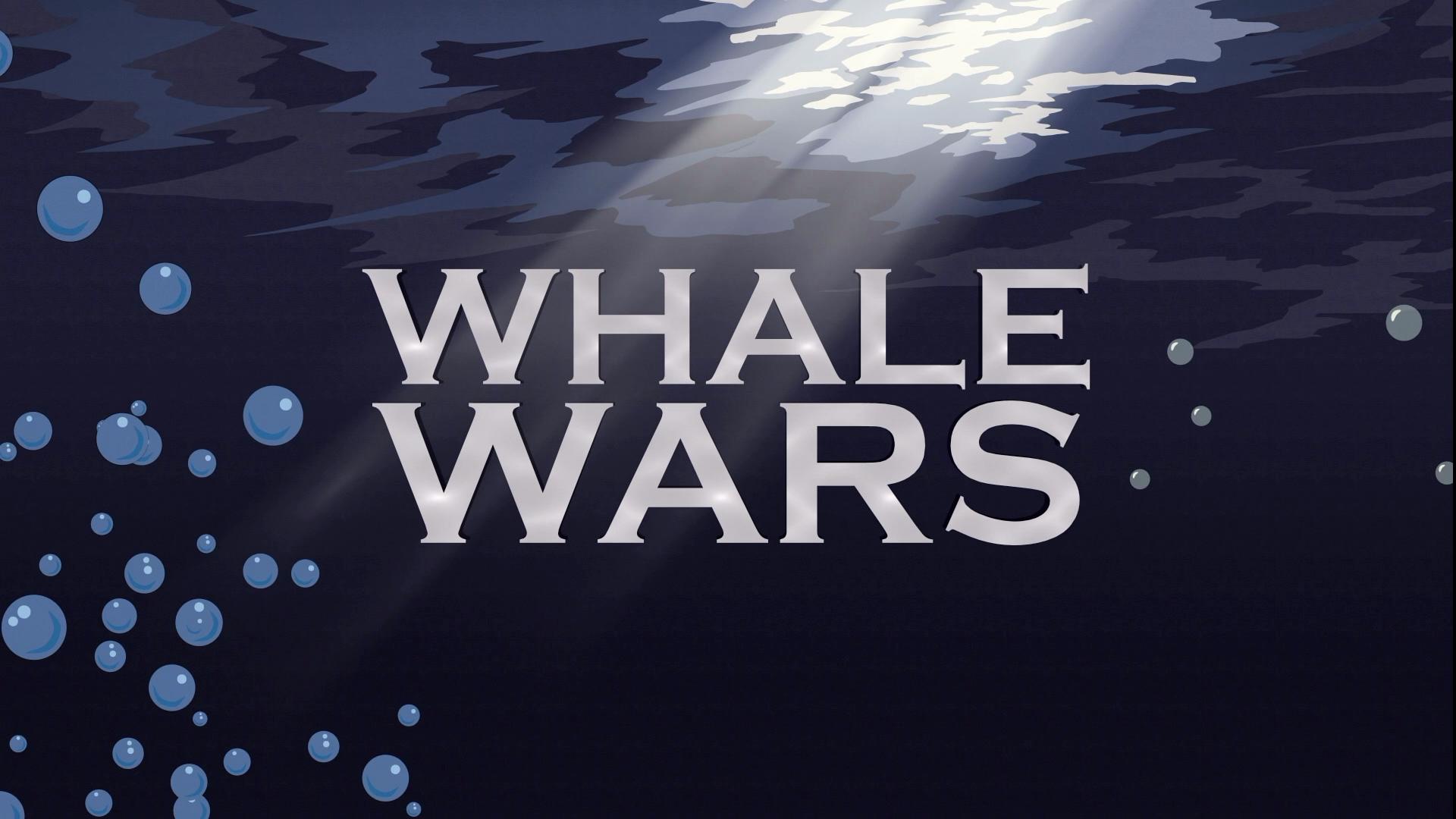 《鲸鱼保卫战》节目组