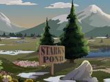 Stark's Pond