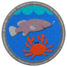 Badge fishing