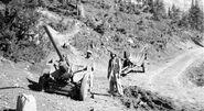 August 1984 - captured field guns in Jaji, Paktia