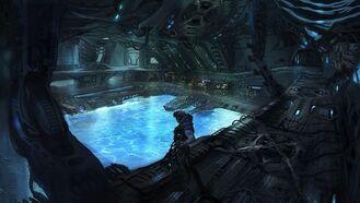 Pool for the Parasite.jpg