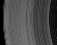 Darvikus A Ring