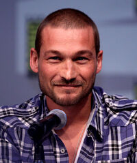 Andy Whitfield.jpg