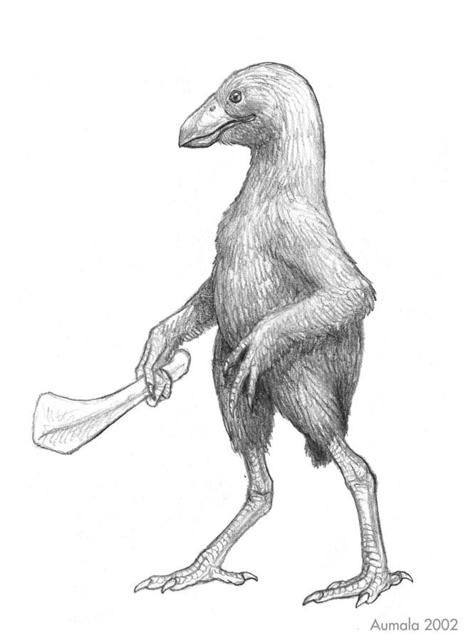 Homoraptor sapiens