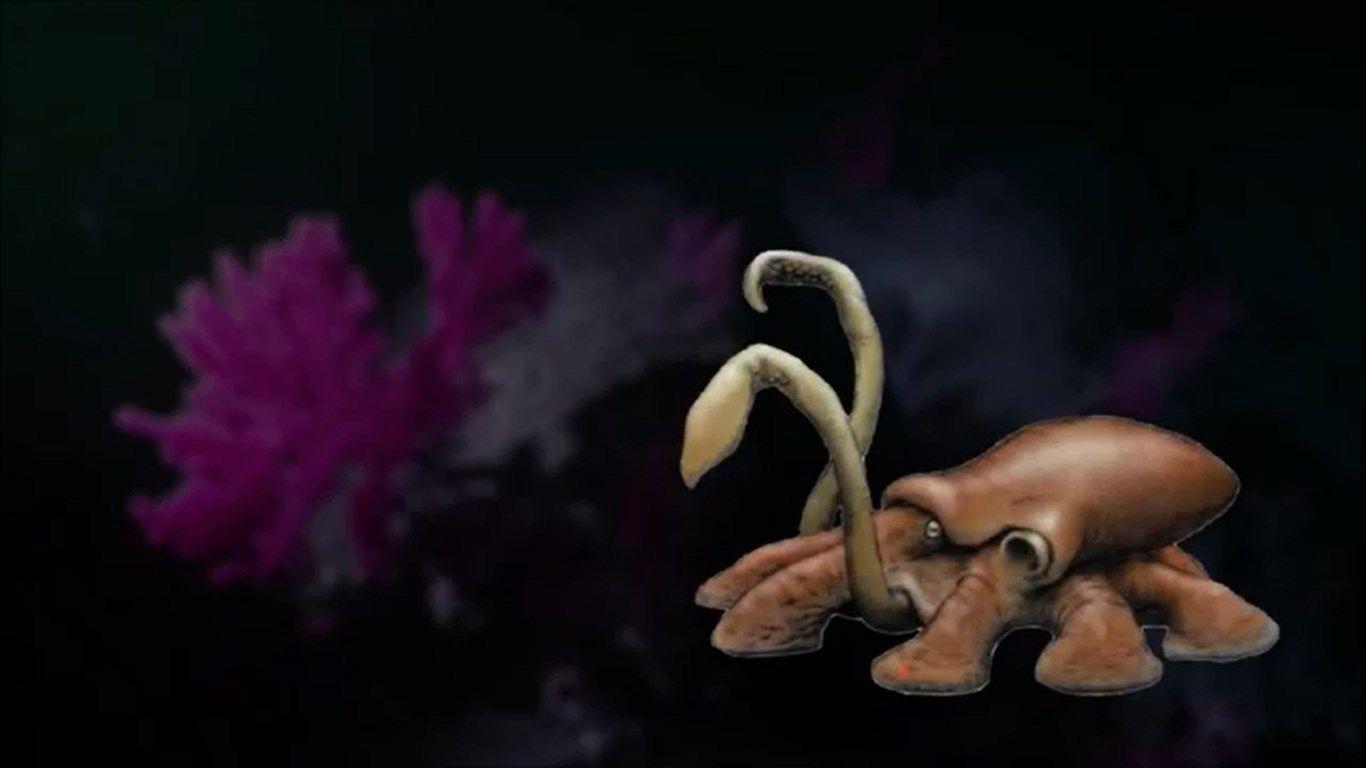 Ambush squid