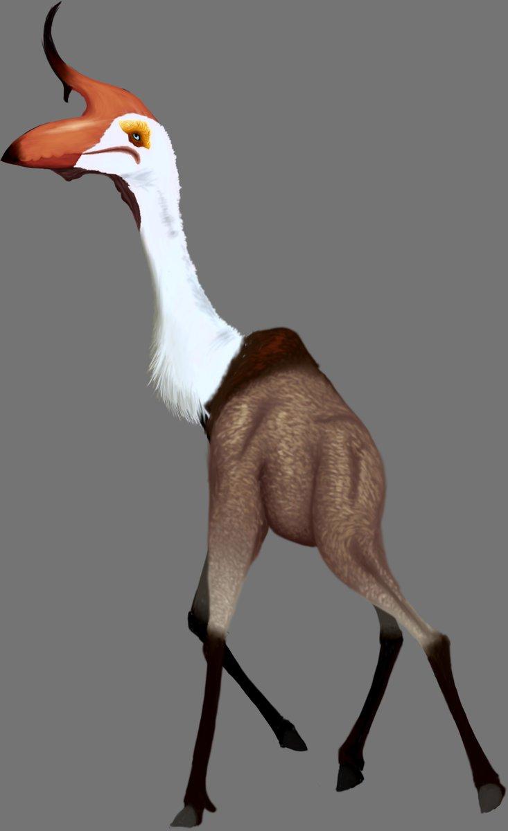 Antelope Pterosaur