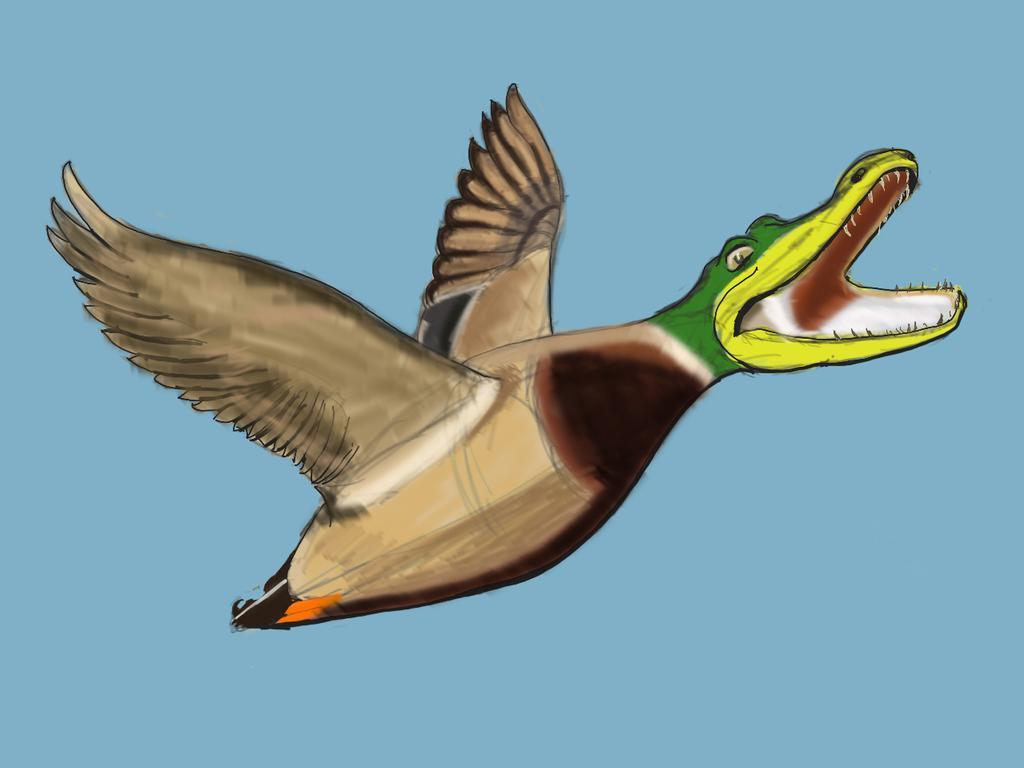 Falcon duck(New Pliestocene)