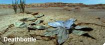 Deathbottle