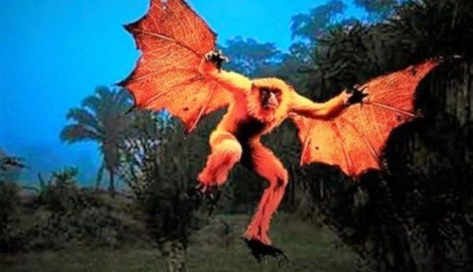 Gibbon bat