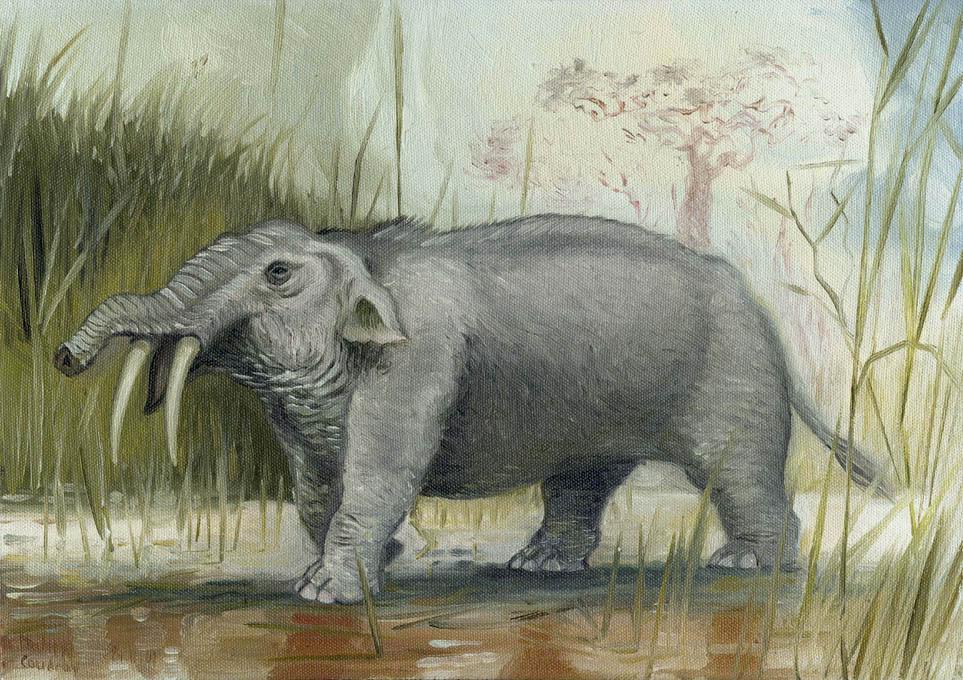 Hippelephant