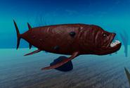 Atlantic Goliath Xyphactigar