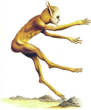 Desert runner.jpg