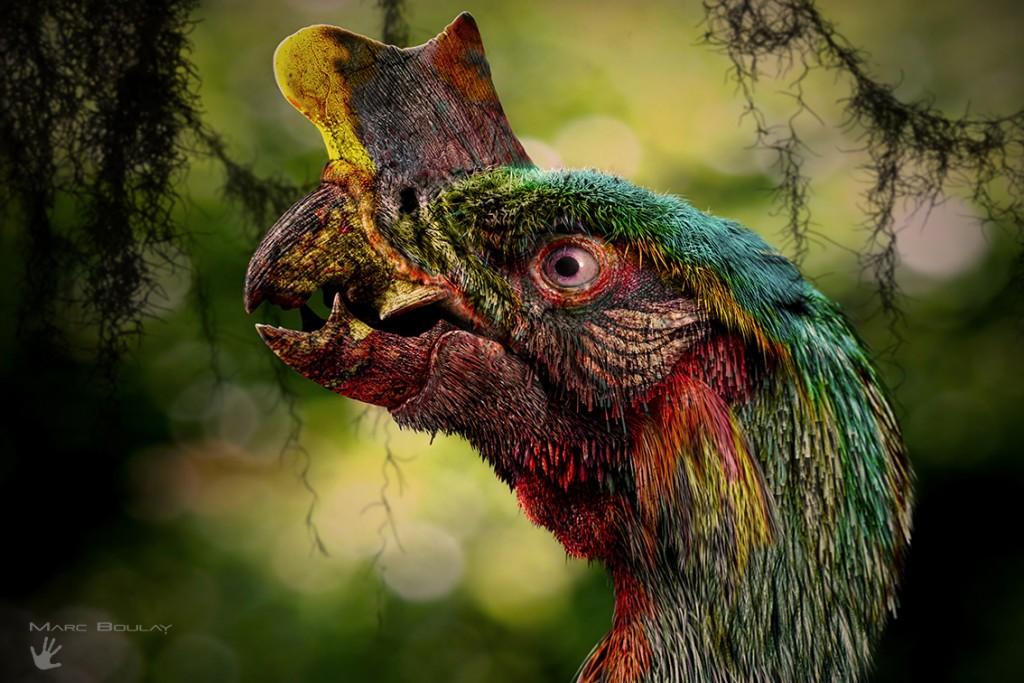 Tyrannornis rex